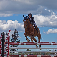 Up and Over (gordeau) Tags: gordon upandover equestrian intheair horsejumping ashby gordeau