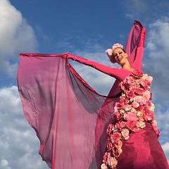 flower bombs bloem steltenlopers the s factory 2016 5 (WWW.THESFACTORY.EU E : info@thesfactory.eu T :06-2) Tags: show pink zomer salsa bloemen stiltwalker straattheater roze bloem stiltwalkers zomers stelten stelzentheater steltloper steltlopers caribisch steltenlopers steltenloper steltenact suzannevanrooy steltenacts steltzenläufer