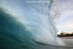 IMG_9140 copy (Aaron Lynton) Tags: beach canon hawaii big paradise surf waves sigma wave maui surfing spl makena shorebreak lyntonproductions