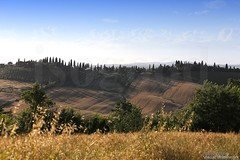 20160704_crete_senesi_siena_tuscany_66p67 (isogood) Tags: italy landscapes horizon country scenic tuscany crete siena cretesenesi asciano senesi