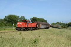 6439 met Electrolux-trein (klok.richard) Tags: diesel ns cargo electrolux rijn alphen dbcargo 6439 wasmachines rhijn goederentrein
