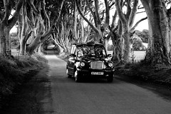 The Dark Hedges, Northern Ireland - Black Cab (Regan Gilder) Tags: road trees bw black reflection canon countryside blackwhite cab taxi country transport lane northernireland blackcab thedarkhedges canoneos5dmarkiii