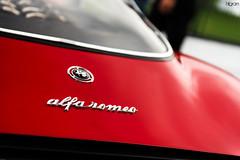 Tipo 33 Stradale (Hilgram Photography) Tags: detail cars island italian 33 automotive alfa romeo amelia concours stradale tipo