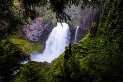 Wet 'n Wild (P Matthews) Tags: trees mist mountain water oregon landscape waterfalls cascademountains sahaliefalls