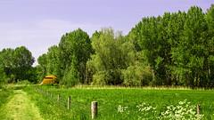 FA_010 (Dutch_Chewbacca) Tags: nature netherlands spring fort sunny dijk brabant 1877 landschap 1880 waterlinie nieuwe 1847 altena brabants hollandse uppel gantel uppelse schanswiel