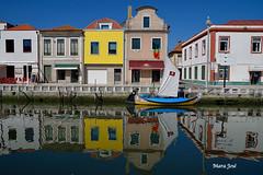 aveiro-portugal (M Jos Encarnao) Tags: citrit