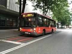 Bilbobus (inigo.vanaman) Tags: plaza españa man bus public spain country transport bilbao buenavista 01 transportation bizkaia basque euskadi autobús bilbobus arangoiti biribila