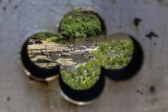 riverview (Michael Kenan) Tags: bridge arizona swimming river highway view steel indian salt az american bathing