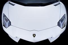 Lamborghini (Mark Chandler Photography) Tags: auto color colour classic cars car wheel canon ga emblem georgia photography photo automobile stock 7d marietta corvette lamborghini carshow markchandler