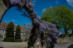 Topiary. (Lee1885) Tags: flowers trees garden nikon topiary arch trinity jersey hedges channelisland d7100