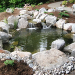 "Tranquil Koi Pond By Greenhaven Landscapes <a style=""margin-left:10px; font-size:0.8em;"" href=""http://www.flickr.com/photos/117326093@N05/18323553315/"" target=""_blank"">@flickr</a>"