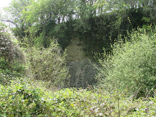 Longhope: Hobb's Quarry (Gloucestershire)