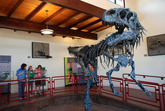 Cleveland Lloyd Dinosaur Quarry (BLMUtah) Tags: park family students field price children utah office kid education san dinosaur center class paleontology every rafael swell learn fossils blm interpretive bureauoflandmanagement clevelandlloyddinosaurquarry blmutah