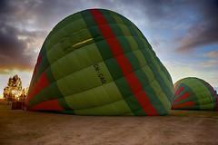 Are you ready ! (najeebmahmud) Tags: blue light red sky sun tree green clouds sunrise couple pattern stripes hotair balloon bluesky 2470mm d810 nikond810 nikkor2470mm