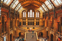 Natural History Museum - London - England (TLMELO) Tags: street inglaterra red england woman black london underground subway dinosaur metro jubilee c mulher games scene victoria preto queen vermelho camel londres years olympics anos elisabeth 60 mindthegap jogos camelo reinounido victoriastation olimpics rainha london2012 unitedkingdon dinossauro olímpicos jubileu mygearandme ringexcellence
