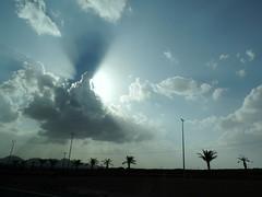 Above You (Khaled M. K. HEGAZY) Tags: blue sky cloud sun white black nature silhouette closeup nikon outdoor palmtree coolpix ksa kingdomofsaudiarabia p520