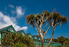 Caribbean Blue (Eiona R. [busy for two weeks]) Tags: coast gower beachhuts wfc langland langlandbay