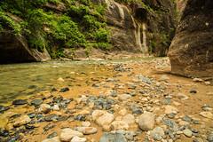 Zion National Park 8 (Randy Keeton) Tags: park outside outdoors outdoor oasis national randy zion narrows keeton