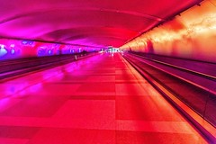 Tunnel of Lights - DTW (Don3rdSE) Tags: show light motion color canon eos airport may tunnel changing walkway 5d canon5d interest dtw 2016 detroitairport transprotation don3rdse 3rdsiblingphotography