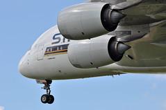 SQ0308 SIN-LHR (A380spotter) Tags: approach landing arrival finals shortfinals threshold rollsroyce trent900 trent97084 turbofan engine powerplant wing undercarriage landinggear nosegear belly airbus a380 800 9vskf msn0012 singaporeairlines sia sq sq0308 sinlhr runway27l 27l london heathrow egll lhr