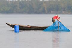 (saifsohel) Tags: red blue green fish fishermen bangladesh ttl bangladeshi hunter