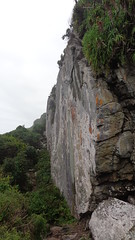 Vertical rock face (Rckr88) Tags: africa travel cliff mountain mountains travelling nature face rock vertical southafrica outdoors rocks hiking south hike cliffs greenery gardenroute tsitsikamma hikes westerncape tsitsikammanationalpark verticalrockface
