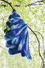 Pincha from Knitty in Adriafil Knitcol (stitchling) Tags: knitty pincha