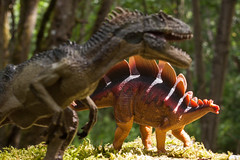 Trapped in a sunbeam (Chris Blakeley) Tags: toys dinosaur stegosaurus allosaurus toyphotography