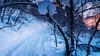 al alba (David Ruiz Luna) Tags: naturaleza snow cold color nature sunrise finland landscape cool scenery europa europe camino path escenario nieve paisaje adventure route amanecer lapland frío sleds arcticcircle finlandia aventura winterlandscape pulka trineo laponia northerneurope sápmi lemmenjoki círculopolarártico europadelnorte lemmenjokinationalpark touraroundtheworld parquenacionaldelemmenjoki polartrekking