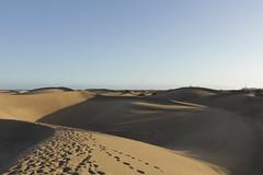 (laurasalvio) Tags: espaa luz grancanaria sombra dunas puestadelsol
