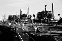 (Casey Lombardo) Tags: blackandwhite bw film industrial longbeach grainy refinery ilford yashica longbeachca filmgrain yashicaelectro35 refineries filmphotography yashicaelectro sfx200 ilfordsfx200 ilfordfilm bwfp