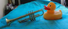 Musical Duck (AnimalAmanda) Tags: music duck wind creative trumpet musical fantasy sound slides brass valves rubberduck