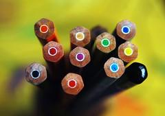 Multi-colour w. black pencil - DSC_6666 (Shutterbuglette) Tags: blue red orange colour detail macro green art yellow pencils dof close purple bokeh odd 101 makingart torquoise watercolourpencils artiststools artpencils woodenpencils multicolouredpencils 1drawingpencil