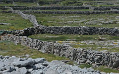 le labyrinthe o l'on aime se perdre (laetitiablabla) Tags: ireland galway beautiful grass rock stone wall de island europe pierre ile eire paysage mur inisheer aran comte herbe irlande ailleurs