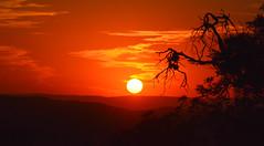 SILUETAS SOBRE EL ATARDECER (Marina Balasini) Tags: world light sunset sky sol argentina atardecer sonnenuntergang paysage coucherdesoleil marinabalasini commentbygwlap