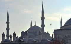 Istanbul 3 (orientalizing) Tags: desktop architecture turkey 17thcentury minaret istanbul dome ottoman bluemosque sultanahmet featured sultanahmetcamii sultanahmedmosque 16091616