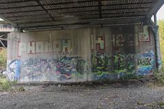 Jag, Grubs, Phonoh, Inkhead (NJphotograffer) Tags: new railroad bridge graffiti nj rail crew jersey dna roller jag graff grubs trackside inkhead twerk phonoh