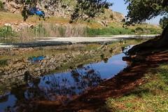 #lebanon #west #bekaa #nature # (salam.jana) Tags: lebanon west nature bekaa