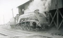 img756 (OldRailPics) Tags: steam aberdeen kingfisher british locomotive railways ferryhill 61b 60024