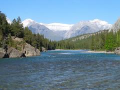 BanffNatlPk155 (alicia.garbelman) Tags: canada alberta rockymountains bowriver banffnationalpark