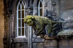 UK - Scotland - Stirling - Castle - Gargoyle (Marcial Bernabeu) Tags: uk greatbritain castle scotland unitedkingdom stirling united kingdom escocia gargoyle castillo bernabeu reino unido grgola gargola reinounido marcial bernabu granbretaa
