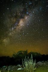 _DSC4919 (claudiotesore) Tags: via astrofotografia estrellas nocturna fotografia exposicion larga milkyway lactea vialactea