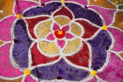 Flower bits kolam center.jpg (melissaenderle) Tags: kolam asia design tamilnadu