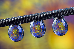 just three drops!.. (ASPphotographic) Tags: drops droplets water waterdrops macro colourful colour clarity composition refraction reflection