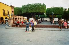 56720011 (alexdotbarber) Tags: 35mm kodakportra800 mexico ricohgr1 sanmigueldeallende analog colornegative film