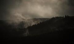 Vapour trails (Emmog) Tags: landscapes nature wetweather autumn summer forest hills rain storm vapour transpiration evaporation