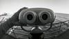 CanonEOS1n_IlfordHP5027.jpg (Michael Bartosek) Tags: bw ilfordhp5 bwfilm epson4490 kodakhc110 canoneos1n 14minutes canon15mmf28 163dilution