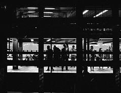 NYC (sglassphoto) Tags: leica nyc newyorkcity blackandwhite newyork voigtlander streetphotography streetphotos blackandwhitephotography leicam6 hardcorestreetphotography streetphotographer nycstreets leicam6ttl streetbw voigtlander35mm nycphotography nycphotographer nycstreetphotographer