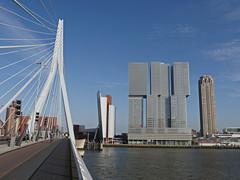 Rotterdam104