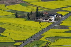 (Vincent_Ting) Tags: china sunset sky reflection tree architecture clouds sunrise dawn fisherman shadows smoke  fishingboat   huangshan wuyuan anhui traffictrails       jiangxiprovince    terracedfield     rapeseedflowers                  fogscene countrysidescenery    vincentting traditionvillage          traditionkitchen